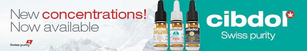 CBD olej blog codojedzenia zdrowie